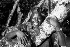 Sheila Mwanyigha celebrates the late Wangari Mathaai with a beautiful message