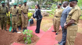 Newspaper Now Exposes How NYS Loses SH250 Million Every Month