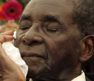 Mugabe asylum in S. Africa opposed