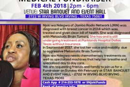 Urgent Community Appeal:NJOKI WA NDEGWA FUNDRAISER FEB4th 2018| 2pm – 6pm IRVING,TEXAS