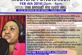 Urgent Community Appeal:NJOKI WA NDEGWA FUNDRAISER FEB4th 2018| 2pm – 6pm IRVING,TEXAS