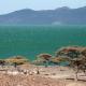 Africa's largest wind farm set to power Kenya