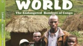 A STUDY OF THE MARGINALISED FOREST PEOPLE:  THE PYGMIES OF THE CONGO